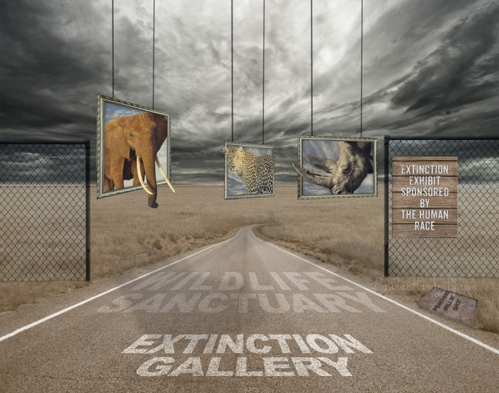 Extinct- Animals Surreal Photo