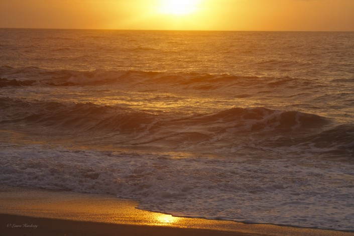 Sunrise over the Ocean by Laura Hardesty