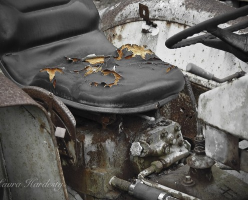 Tractor Seat photo by Laura Hardesty